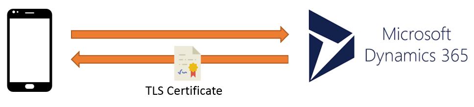 ramontebar_blog_TLS Certificate